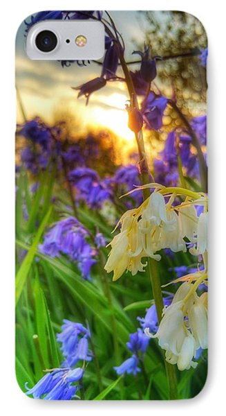 Standing Out IPhone Case by Isabella F Abbie Shores FRSA