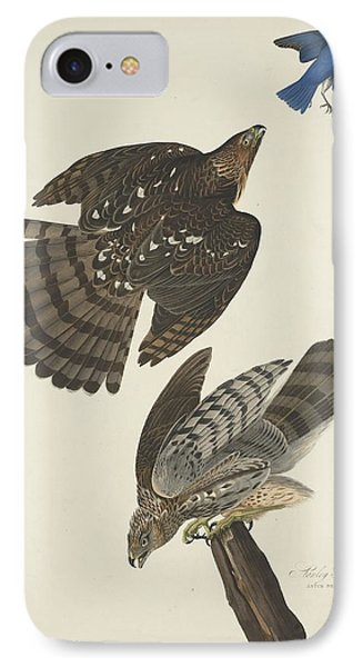 Stanley Hawk IPhone Case by Rob Dreyer