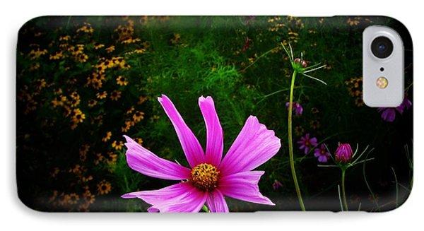 Star Flower IPhone Case by Joyce Kimble Smith