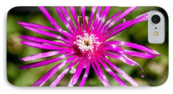 Starburst Of The Wildflowers Phone Case by John Haldane