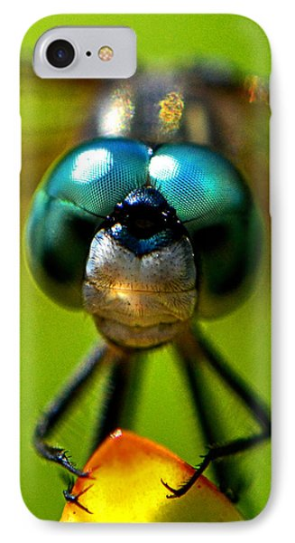 Stare Down With A Dragonfly 001 IPhone Case by George Bostian