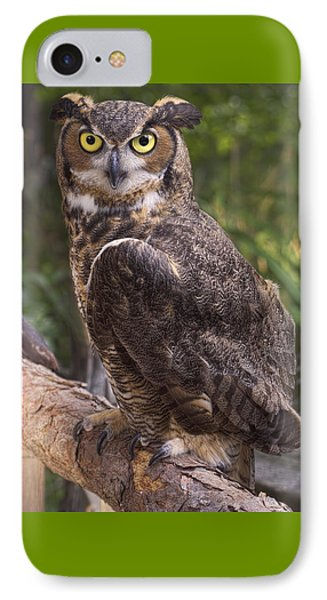 IPhone Case featuring the photograph Stare Me Down Baby by Cheri McEachin