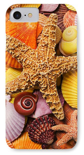 Starfish And Seashells  IPhone Case by Garry Gay