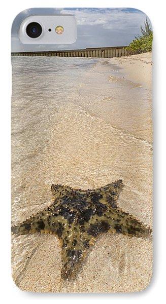 Starfish On The Beach At Starfish Point IPhone Case