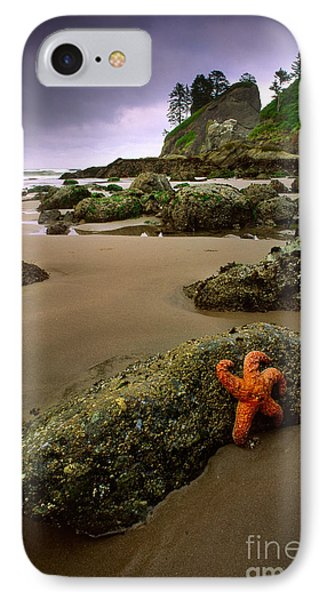 Starfish On The Rocks IPhone Case by Inge Johnsson