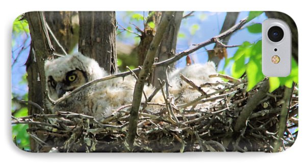 Staring From Its Nest IPhone Case by Jeff Swan