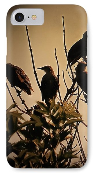 Starlings IPhone 7 Case by Sharon Lisa Clarke