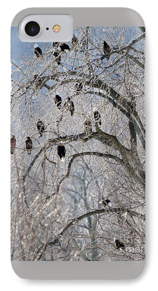 Starved Rock Eagles IPhone Case by Paula Guttilla