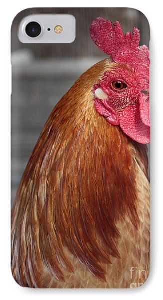 State Fair Rooster Phone Case by Carol Groenen