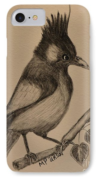 Stellar's Jay - Charcoal IPhone Case by Maria Urso