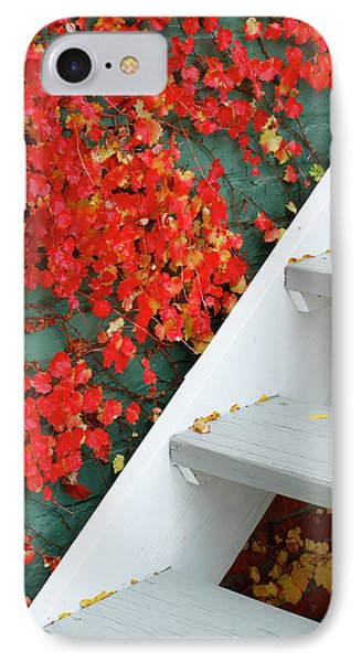 Step To Autumn IPhone Case