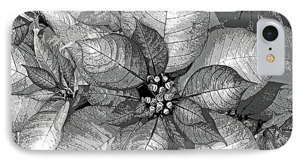 Sterling Shimmer IPhone Case by DigiArt Diaries by Vicky B Fuller