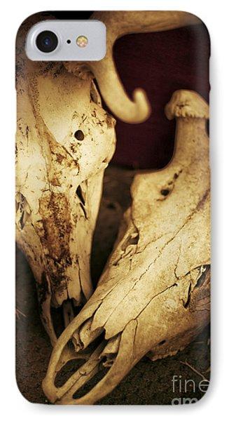 Still Death IPhone Case by Jorgo Photography - Wall Art Gallery