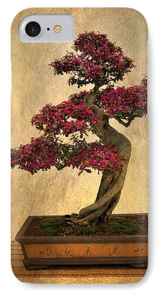 Still Life Bonsai IPhone Case