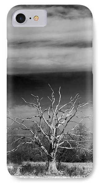 Still Standing IPhone Case by Nicki McManus