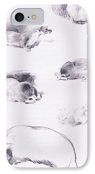 Stoat, Weasel, Badger And Mole IPhone Case