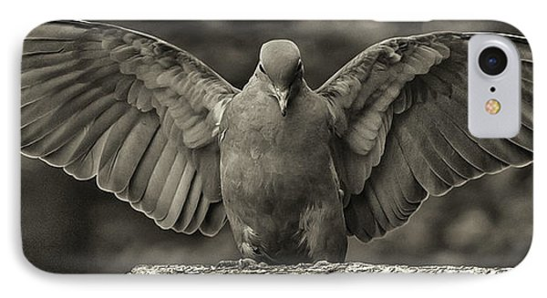 Stone Dove Landing IPhone Case by Jim Moore