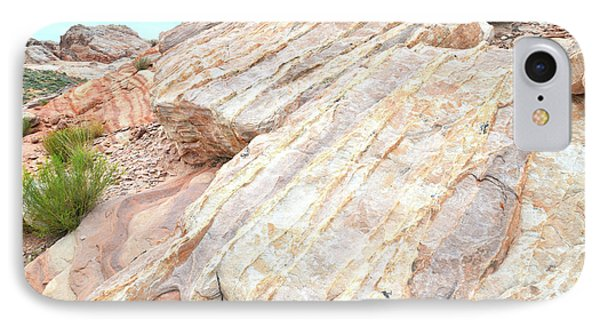 IPhone Case featuring the photograph Stone Feet In Valley Of Fire by Ray Mathis