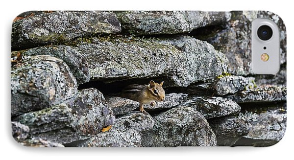 Stone Wall Chipmunk IPhone Case by John Greim