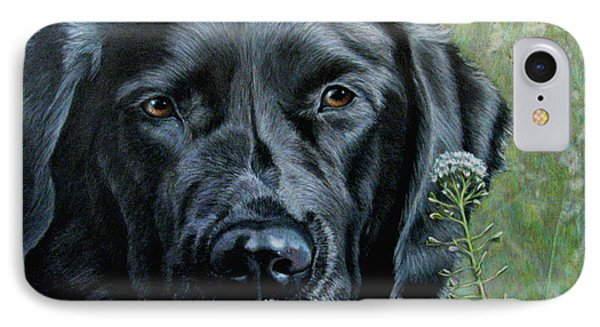 Stop And Smell The Flowers IPhone Case by Beverly Fuqua