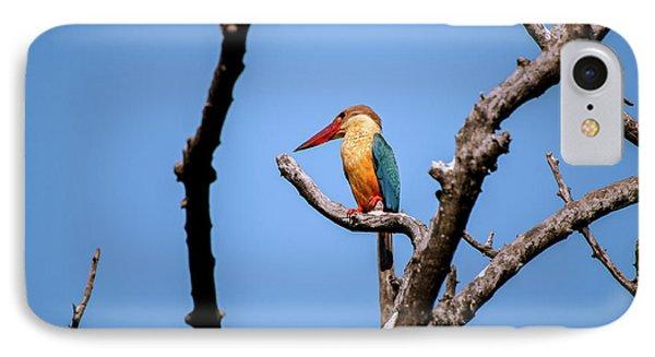 Stork-billed Kingfisher Phone Case by Venura Herath