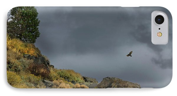 IPhone Case featuring the photograph Stormy Flight by Frank Wilson