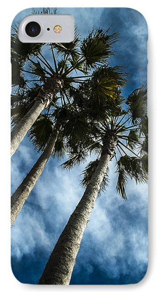 Stormy Palms 1 IPhone Case