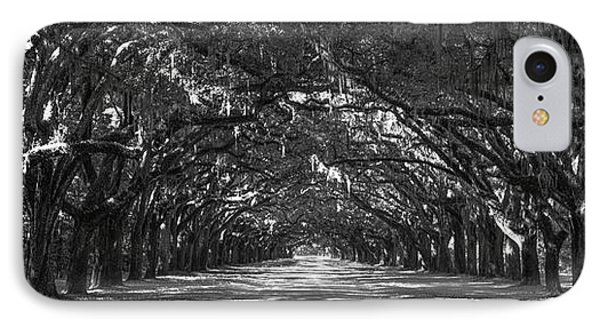 Strength In Numbers Wormsloe Plantation Art IPhone Case by Reid Callaway