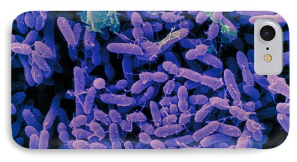 Streptomyces Griseus IPhone Case by Scimat