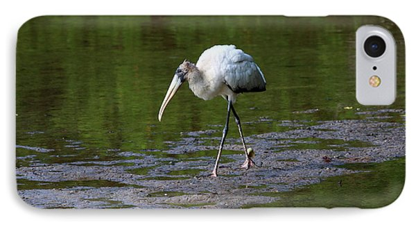 Striding Wood Stork IPhone Case by Christiane Schulze Art And Photography