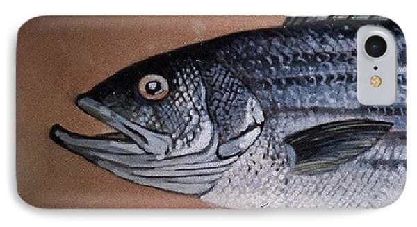 Striped Bass 1 IPhone Case by Andrew Drozdowicz
