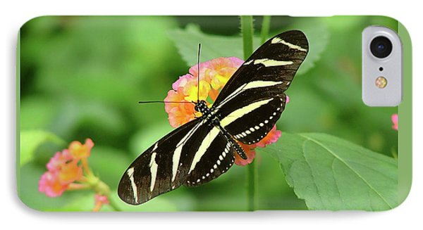 Striped Butterfly IPhone Case by Wendy McKennon
