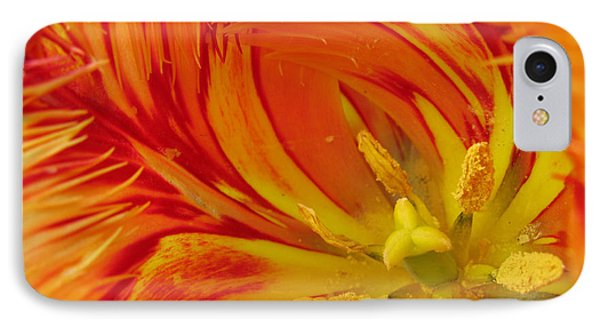 Striped Parrot Tulips. Olympic Flame IPhone Case by Ausra Huntington nee Paulauskaite