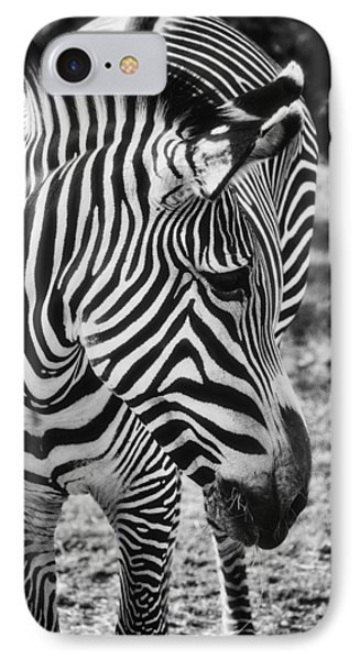 Stripes  Phone Case by Saija  Lehtonen