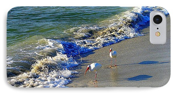 IPhone Case featuring the photograph Strutting Shadows - White Ibis Strutting On The Beach by Shelia Kempf