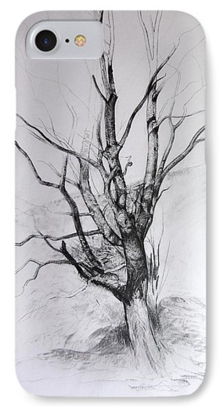Study Of A Tree IPhone Case