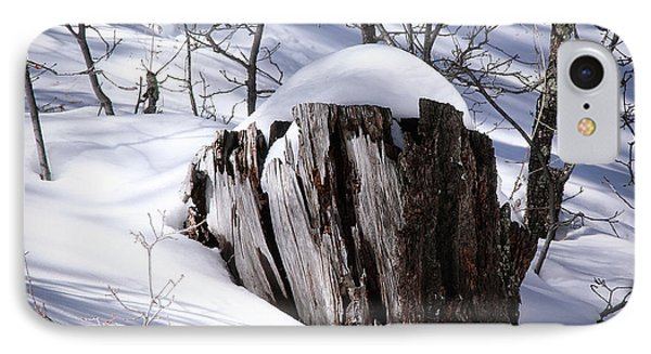 Stump IPhone Case by Elaine Malott