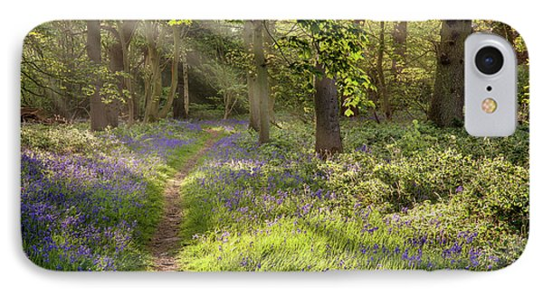 Stunning Bluebell Woodland Path With Magical Light IPhone Case