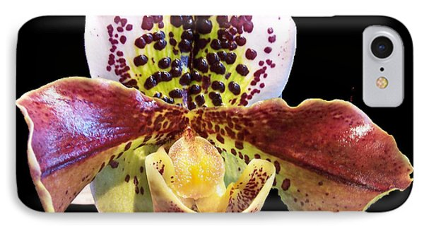 Stunning Orchid IPhone Case