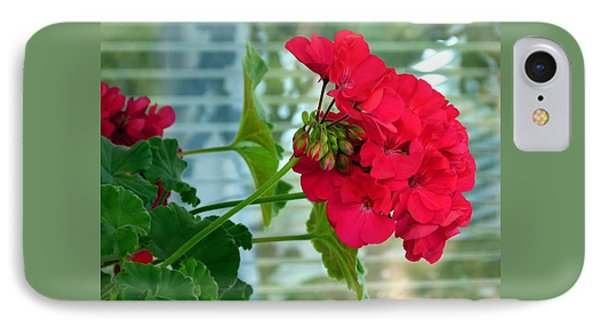 Stunning Red Geranium IPhone Case by Will Borden
