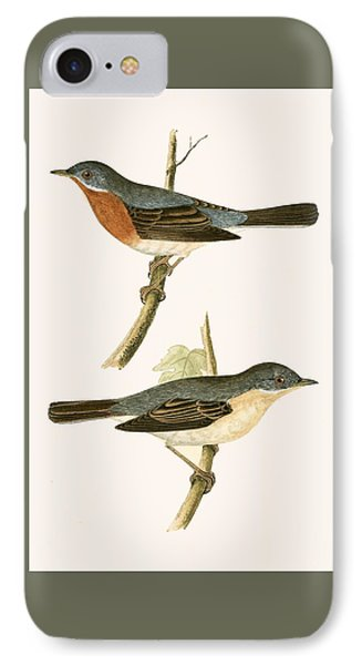 Sub Alpine Warbler IPhone Case by English School