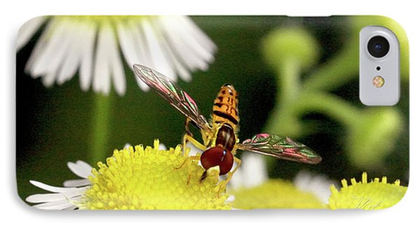 IPhone Case featuring the photograph Sugar Bee Wings by Meta Gatschenberger
