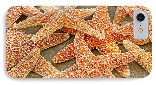 Sugar Starfish IPhone Case
