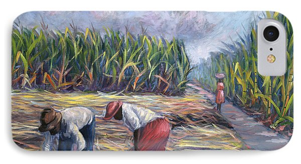 Sugarcane Harvest IPhone Case by Carlton Murrell
