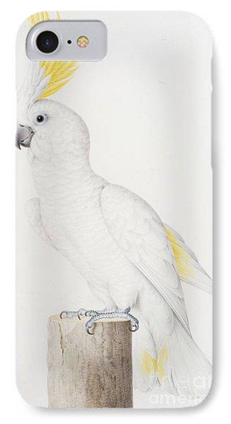 Sulphur Crested Cockatoo IPhone 7 Case