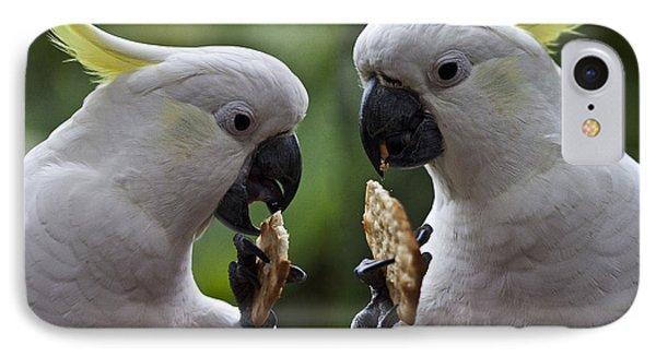 Sulphur Crested Cockatoo Pair Phone Case by Avalon Fine Art Photography
