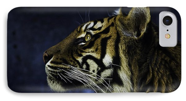 Sumatran Tiger Profile IPhone 7 Case by Avalon Fine Art Photography