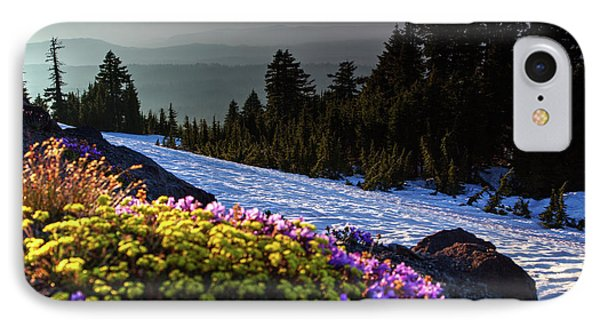 IPhone Case featuring the photograph Summer And Winter by David Chandler