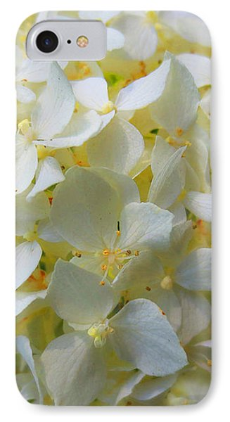 Summer Blossoms IPhone Case