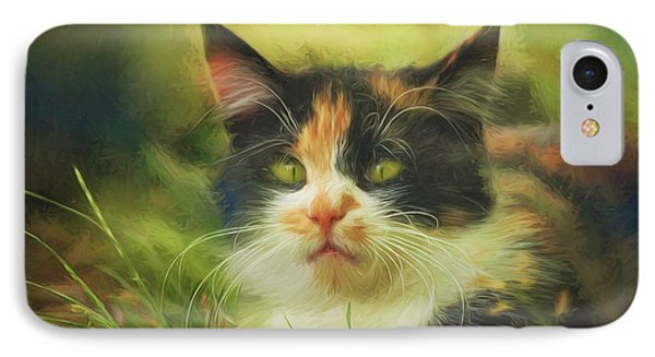 IPhone Case featuring the photograph Summer Cat by Jutta Maria Pusl